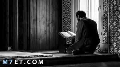 Photo of اتقوا الله حق تقاته معنى التقوى