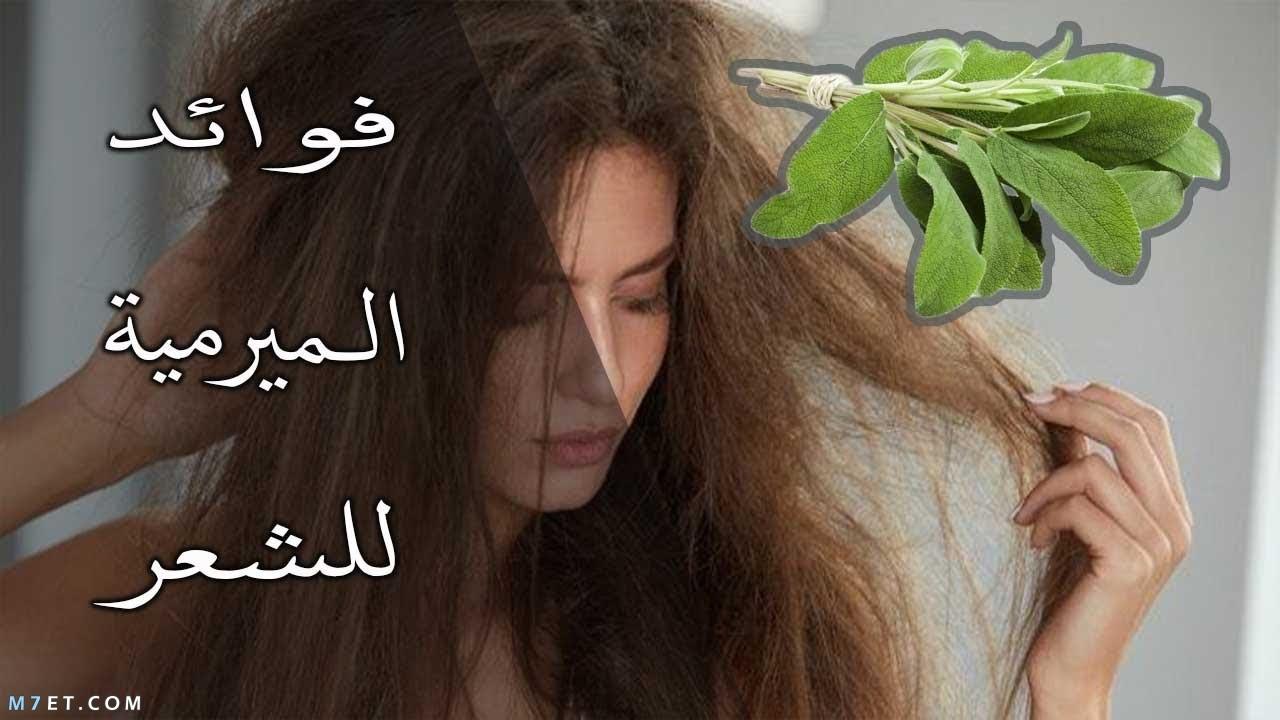 فوائد الميرمية للشعر
