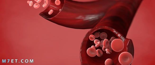 ارتفاع كريات الدم الحمراء في البول