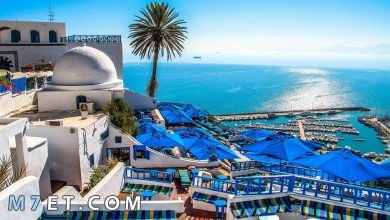 Photo of اهم المناطق السياحية في تونس لعام 2021