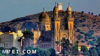 أجمل مدينة في السعودية