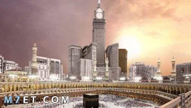 Photo of اجمل مدينة سعودية