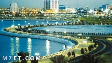 Photo of أجمل مدينة في السعودية لعام 2021