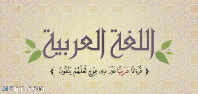 معلومات عن اللغة العربية