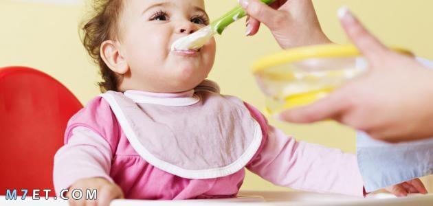 أطعمة الأطفال في الشهر السادس