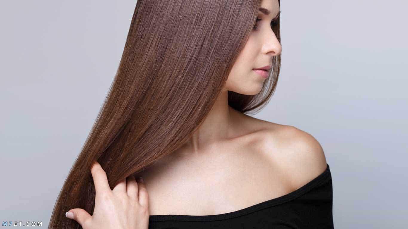كيفية استخدام الصبار لتكثيف الشعر