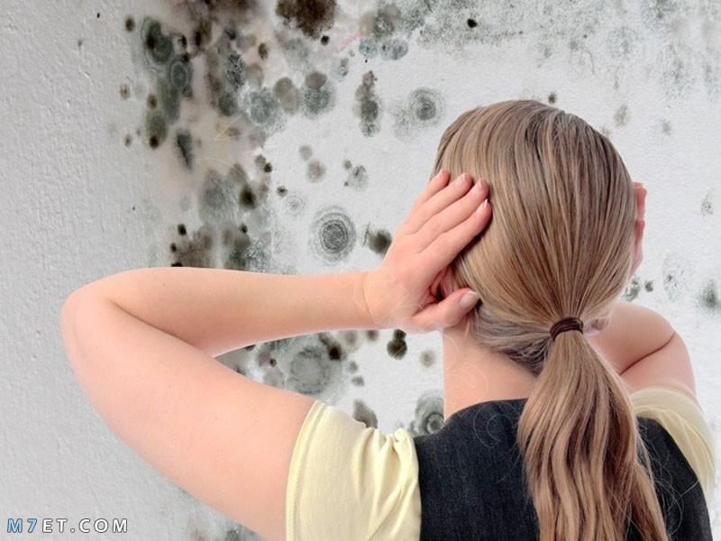 نصائح للتغلب على أضرار الرطوبة