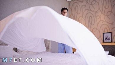Photo of نفض الفراش قبل النوم 3 مرات| من السنن المهجورة
