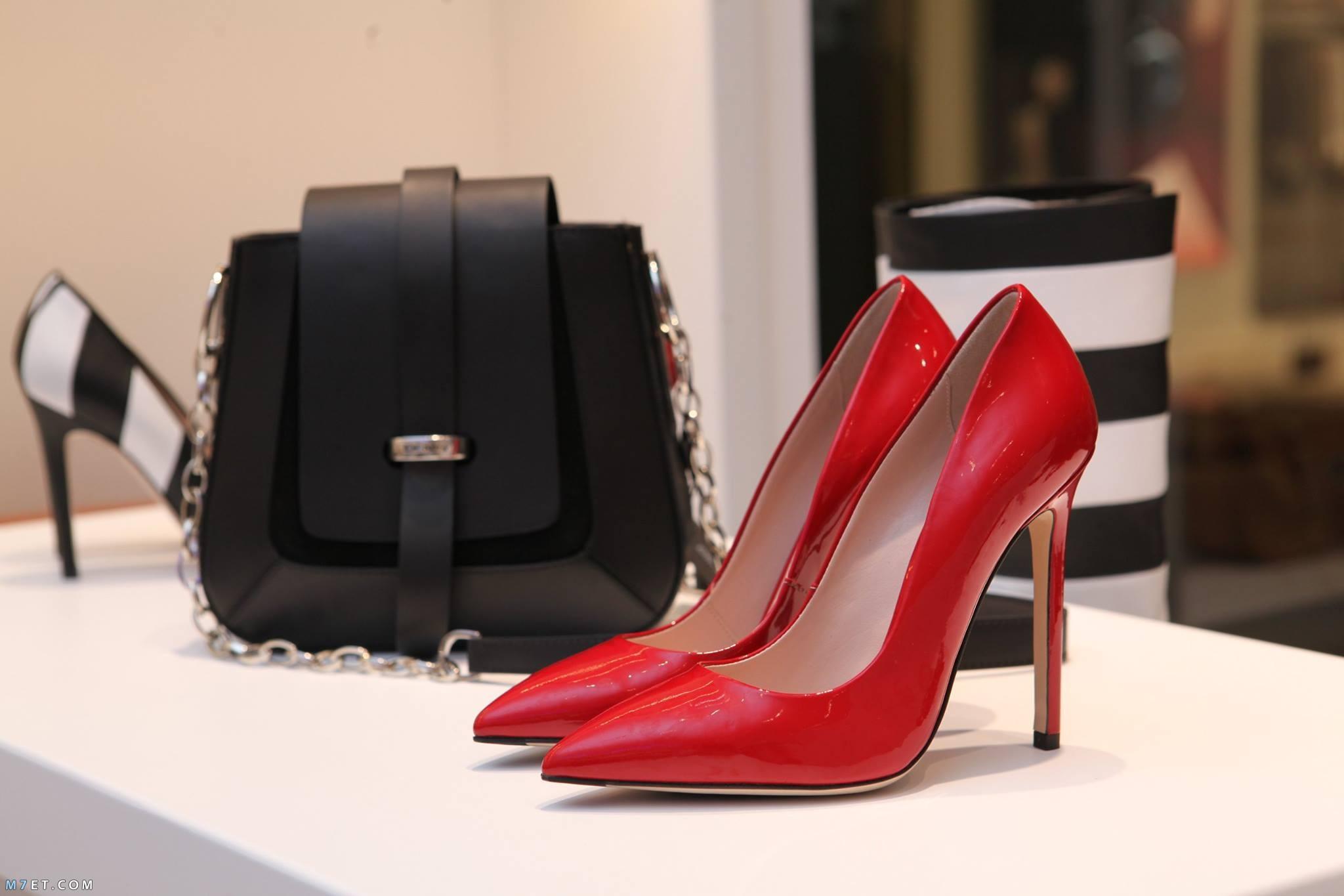 شنطة جميلة أو حذاء أنيق