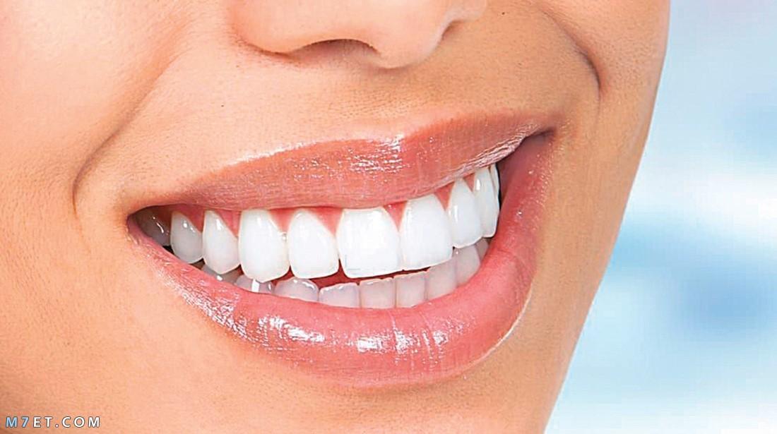 طريقة تنظيف الاسنان