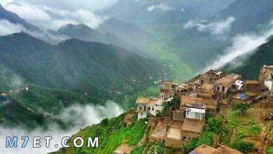Photo of اجمل ما في اليمن لعام 2021