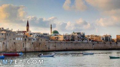 Photo of أجمل مدينة في فلسطين قطعة الأرض المقدسة