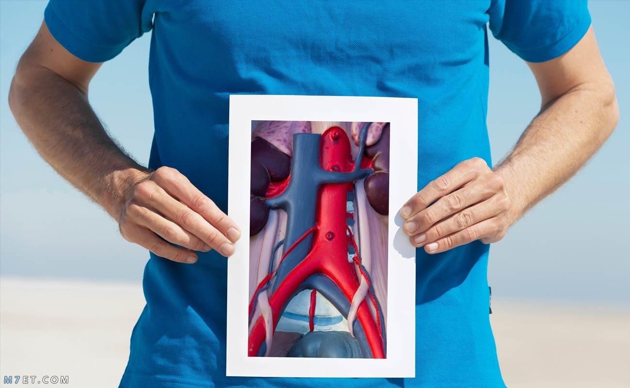 أعراض تمدد الأوعية الدموية