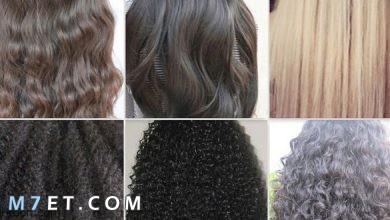 Photo of انواع الشعر للسيدات وطرق العناية به
