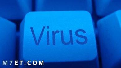 Photo of تعريفات الفيروس الإلكتروني وأشهر 4 فيروسات إلكترونية