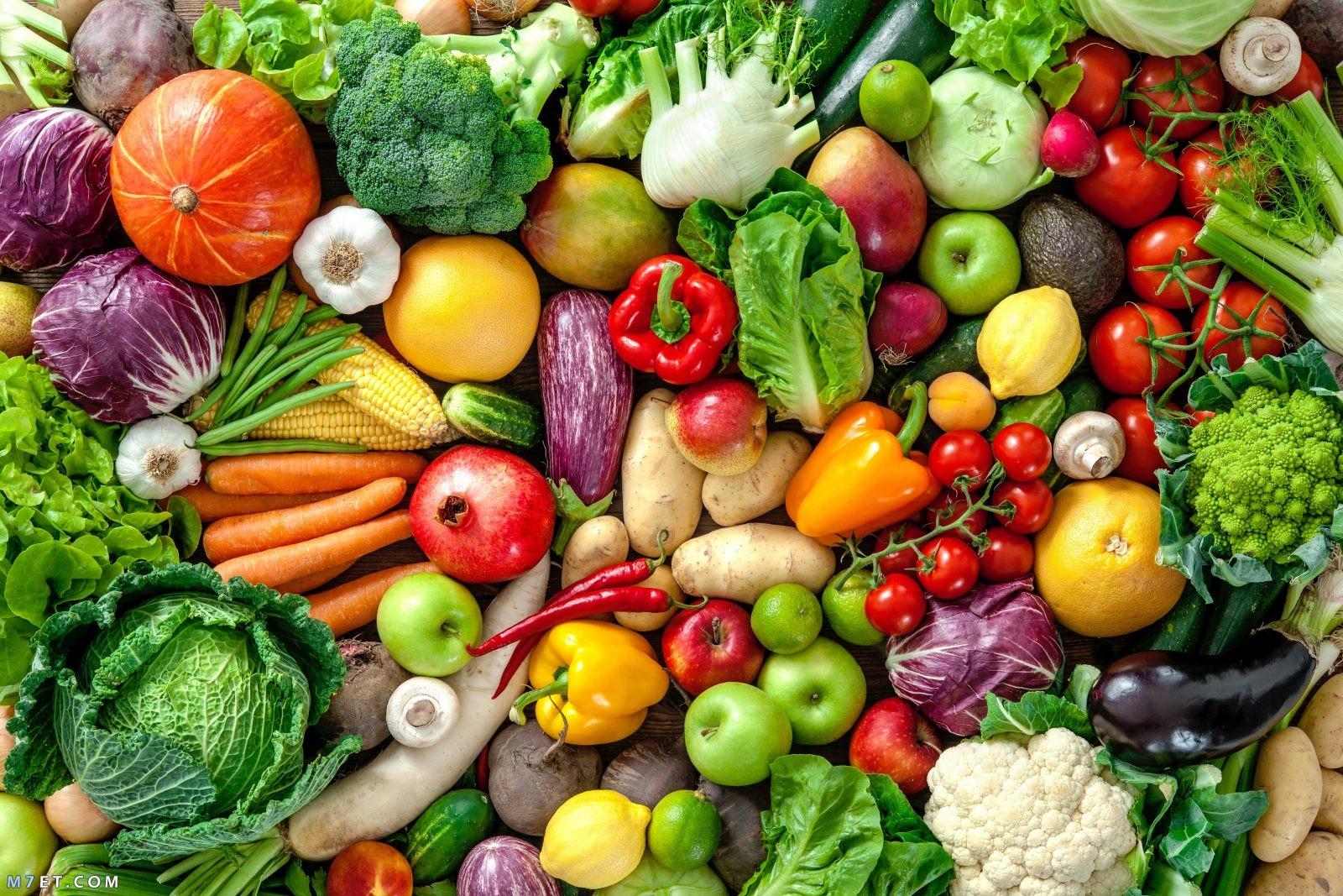 أهمية الغذاء الصحي لجسم الإنسان