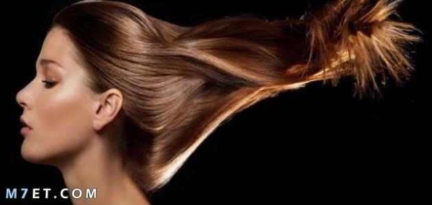 كيف ينمو الشعر