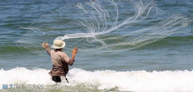 كيف تصنع شبكة صيد السمك