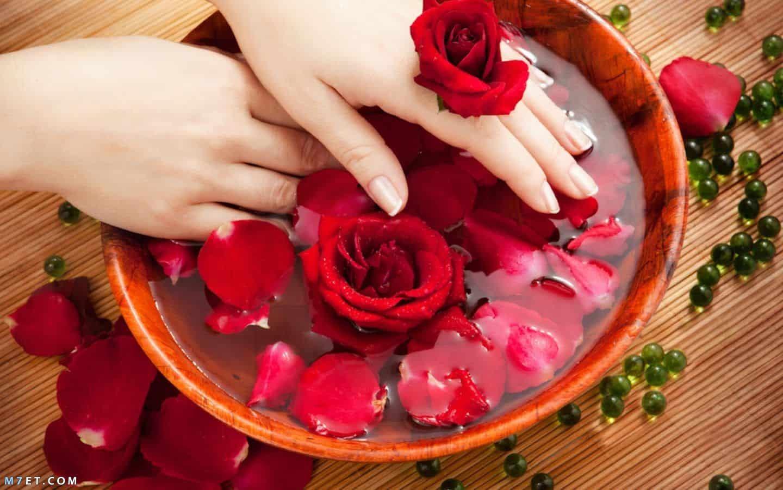 ماء الورد للشعر بعد الاستحمام