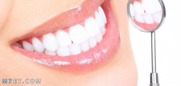 ما هي الأسنان
