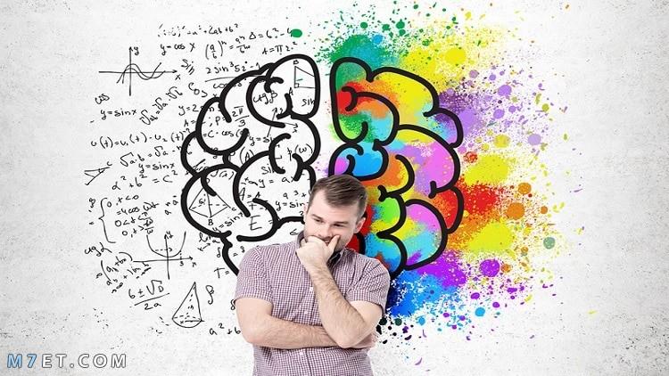 وظيفة العقل