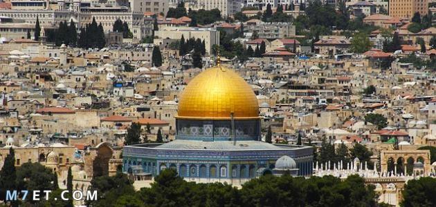 أجمل ما في فلسطين