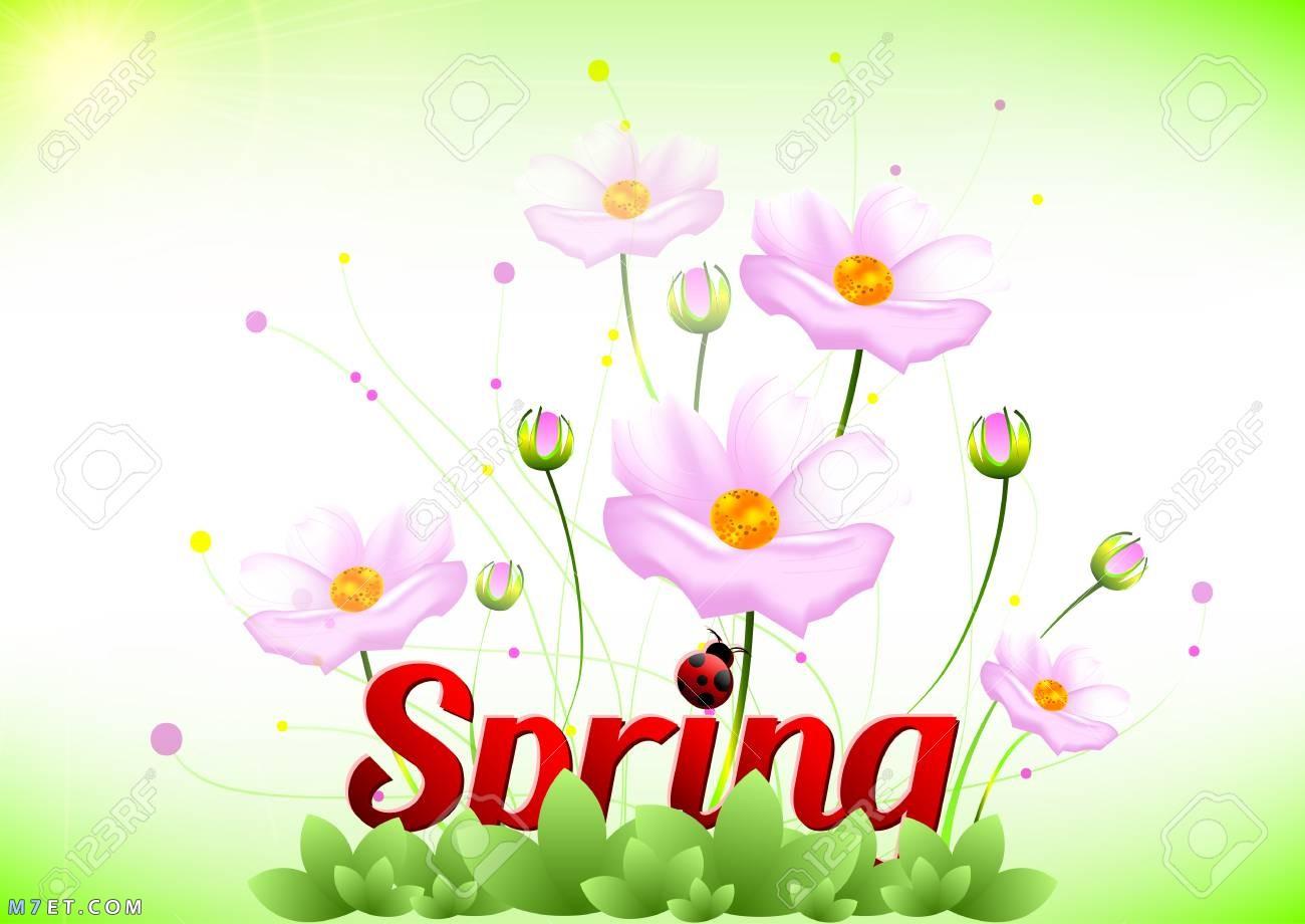 صور تهنئة بعيد الربيع 2021| كل عام وأنتم بخير| شم النسيم