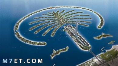 Photo of افضل معالم دبي السياحية لعام 2021