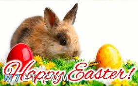تهنئة بعيد القيامة | كل عام وأنتم بخير | HAPPY EASTER
