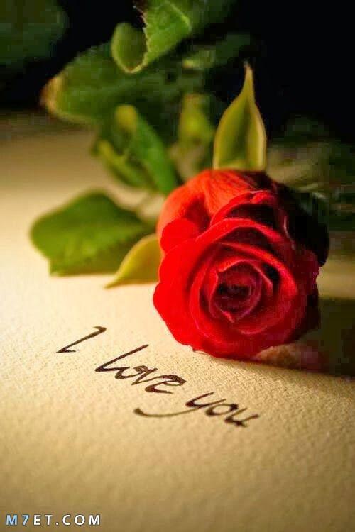 w,v pf I Love You