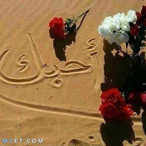 صور الحب.. احبك على الرمال مع وردة حمراء