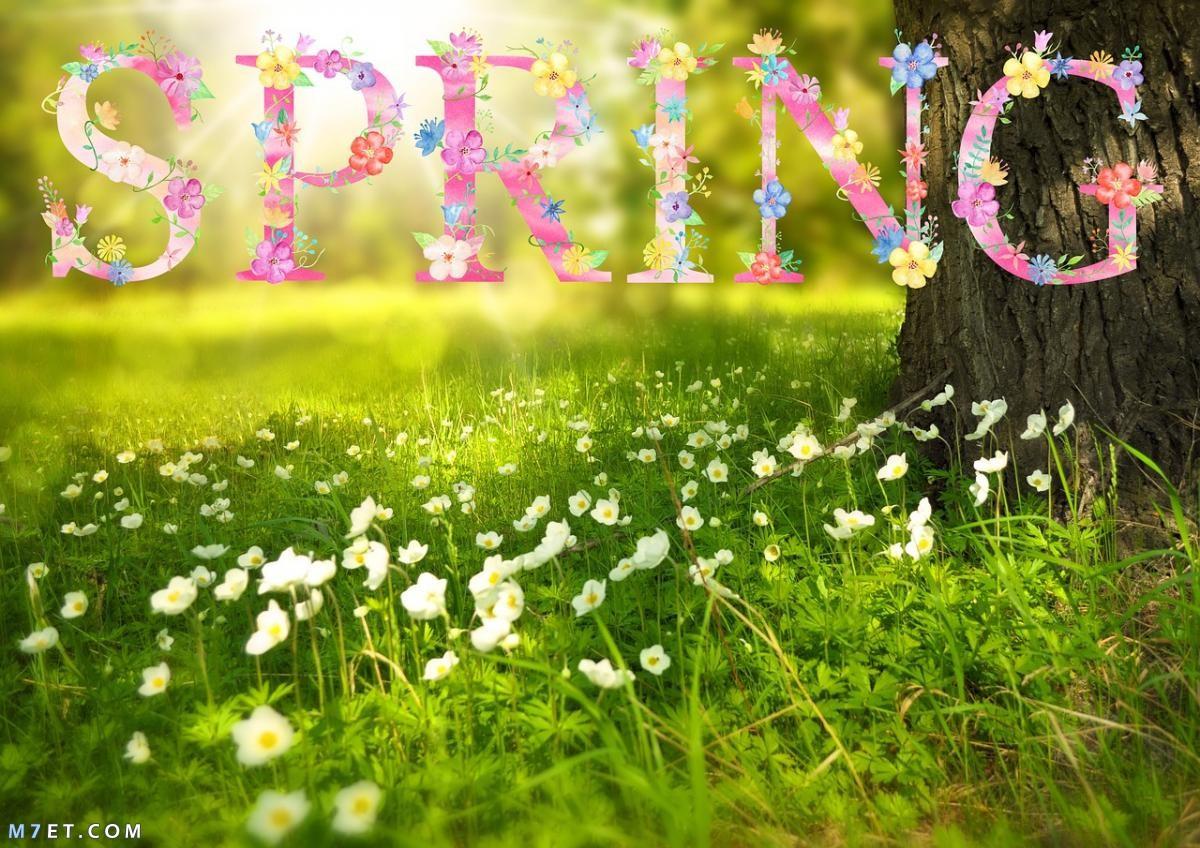 أهلا بالربيع | عيد الربيع | شم النسيم