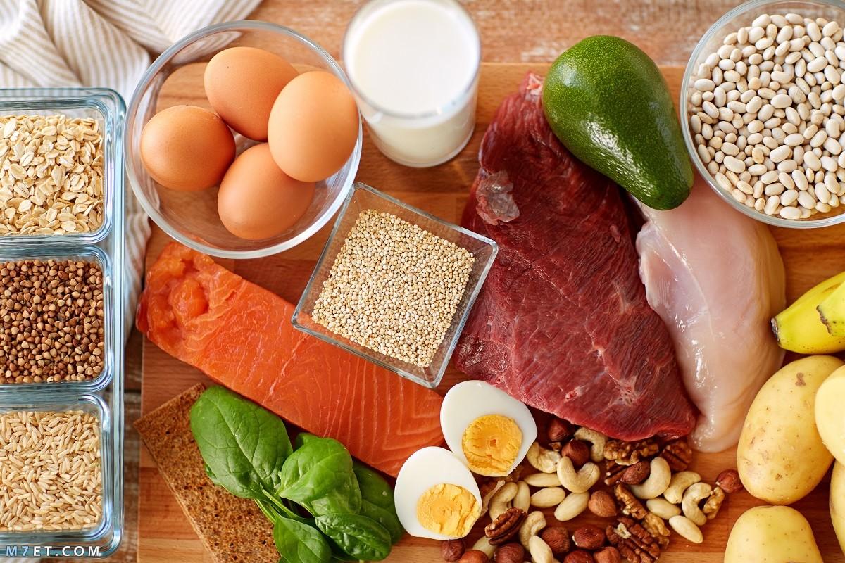 البروتينات والدهون للجسم