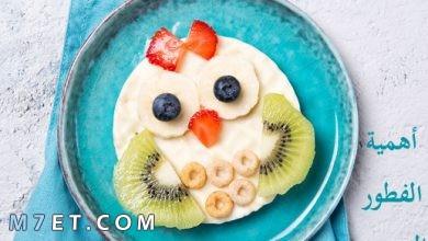 Photo of أهمية الفطور الصحي
