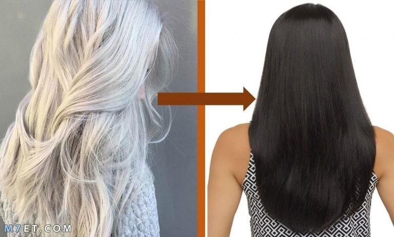 علاج الشعر الأبيض المبكر