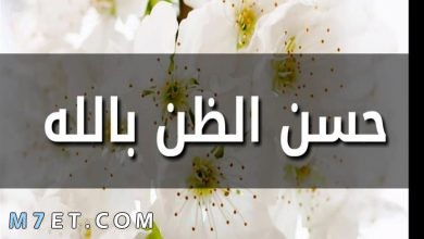 Photo of حسن الظن بالله عبادة قلبية ترفعك في درجات الجنان