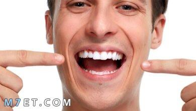 Photo of كيف تقوي أسنانك بوصفات طبيعية لمنع تساقطها