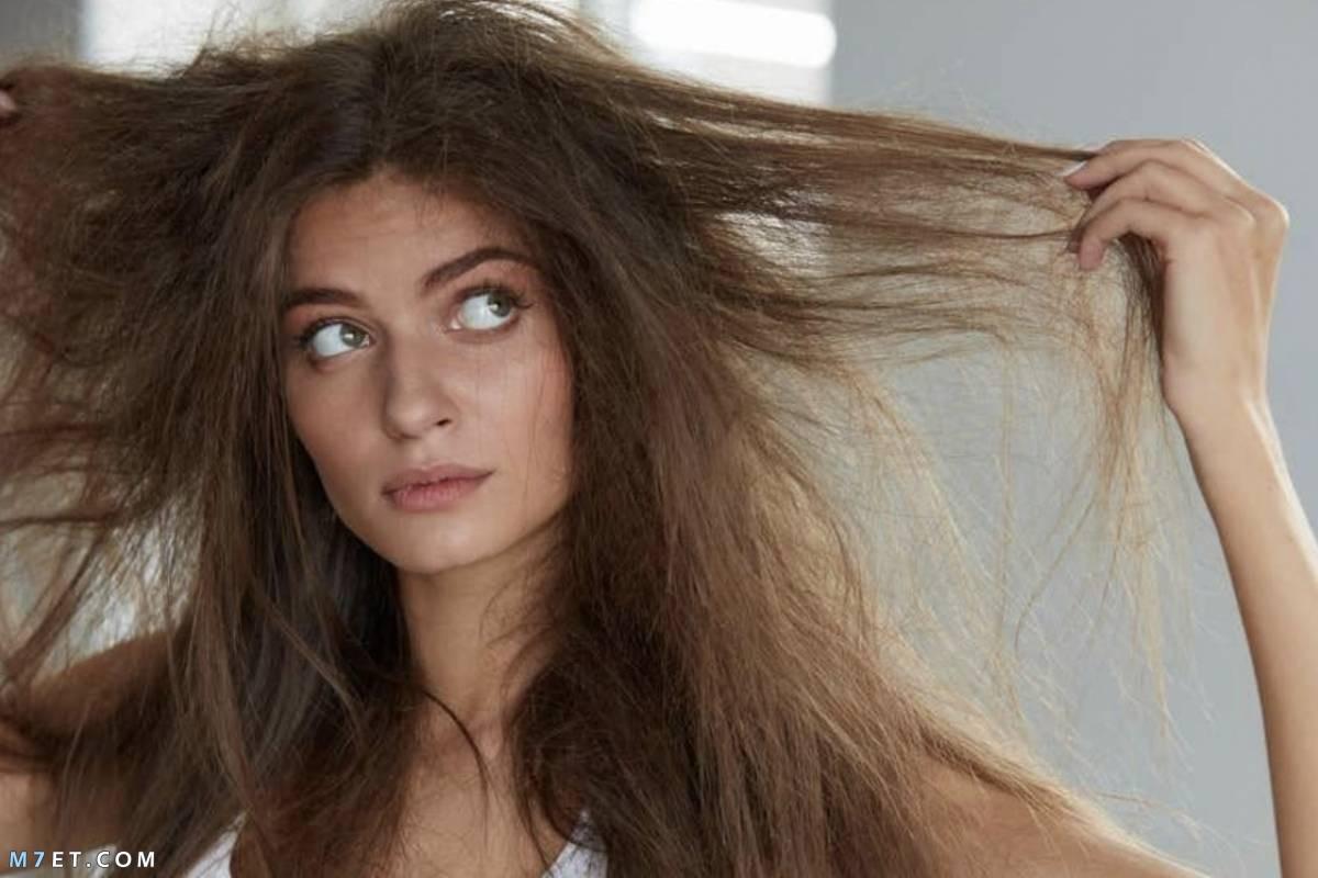 حل لنفشة الشعر الجاف