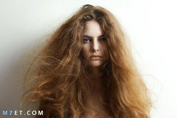 أفضل طرق علاج جفاف الشعر 2021