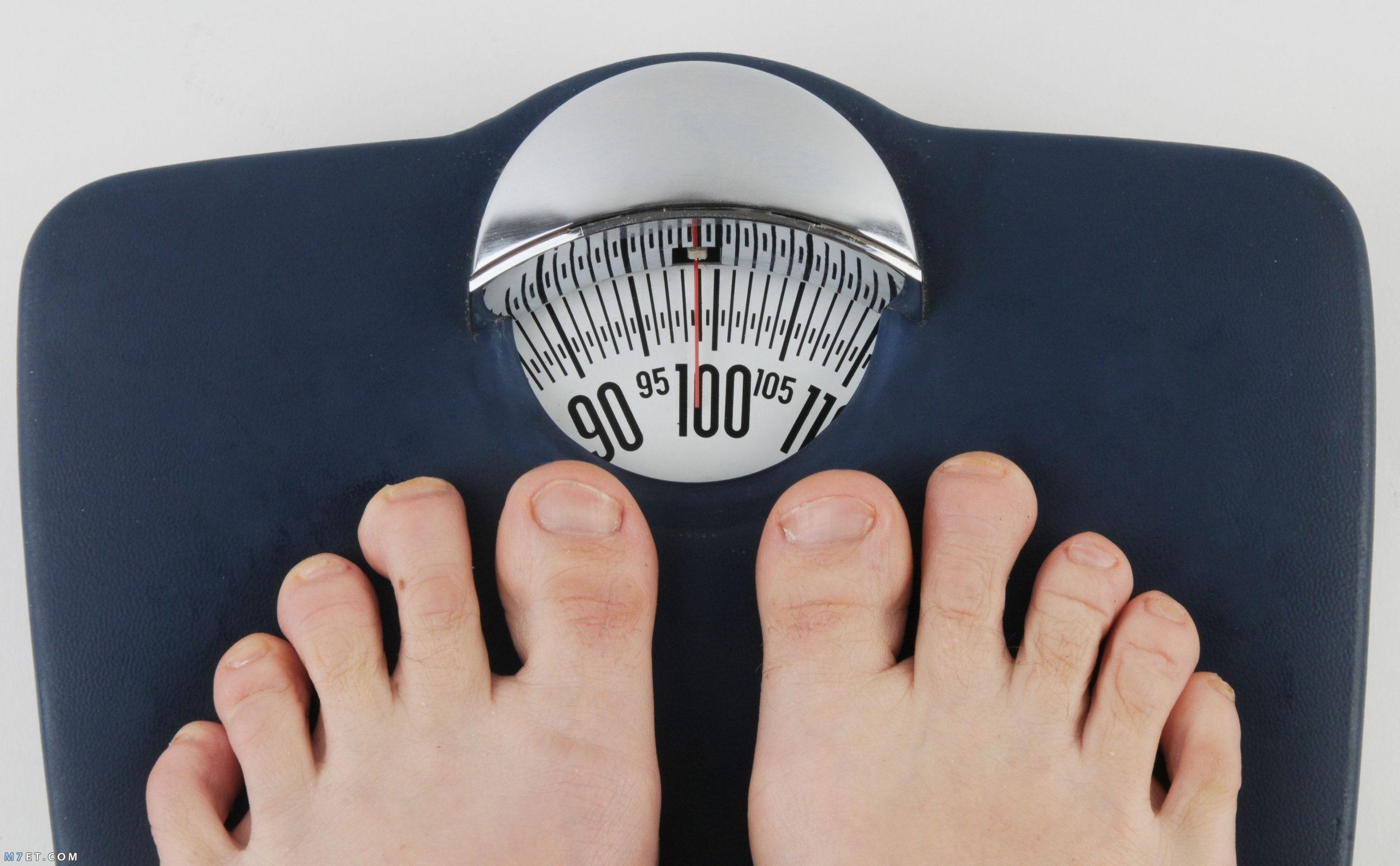 الكتلة والوزن