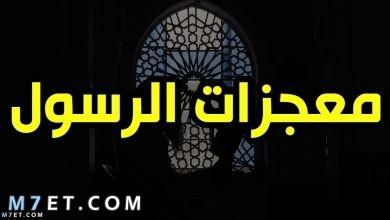 Photo of كم عدد معجزات الرسول التي ذكرت في القران الكريم والأحاديث النبوية