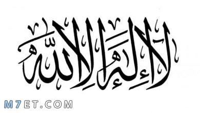 Photo of شروط لا اله الا الله | اهم شروط التوحيد
