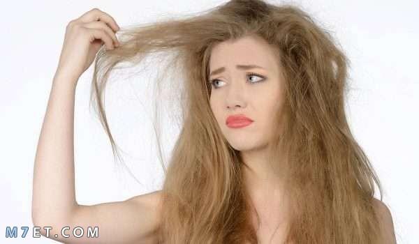 علاج جفاف الشعر طبيا