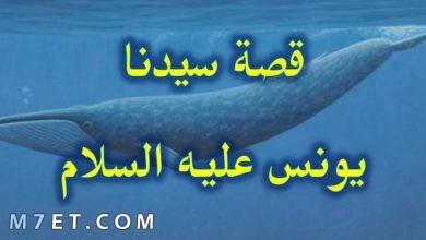 Photo of قصة نبي الله يونس| دعاء سيدنا يونس عليه السلام