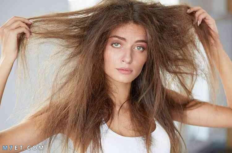 نصائح هامة لترطيب الشعر الجاف