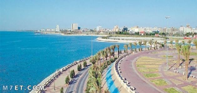 ارتفاع الرياض عن سطح البحر