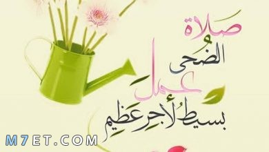 Photo of صلاة الضحى وعدد ركعاتها