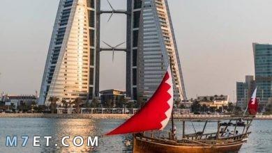 Photo of ما هي بلد المليون نخلة