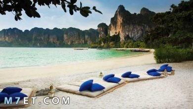Photo of افضل وقت للسفر إلى تايلند