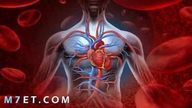 Photo of أمراض القلب التاجية